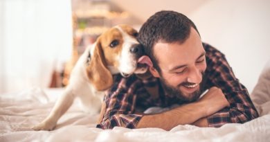 Kinds of Pet Insurance Coverage and Rates